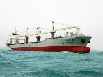 27000DWT多用途船